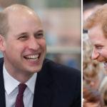 Prince-William-Prince-William-haircut-Prince-William-bald-Prince-William-baldness-Prince-William-Prince-Harry-906849
